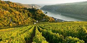 Die Pfalz-Tour Pfalz Tour und Straßburg immer vom 27. April bis 1. Mai